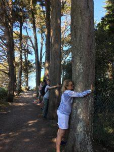 embrasser-les-arbres